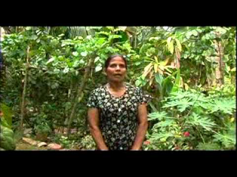 Sri Lanka: Credit Unions Rebuild