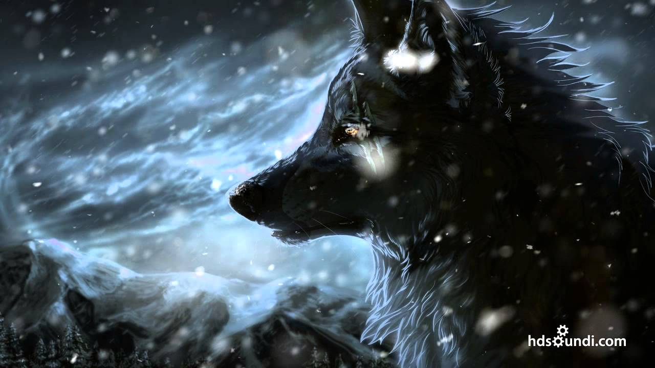 Lonely Girl Wallpaper With Quotes Most Epic Music Ever Quot The Wolf And The Moon Quot By