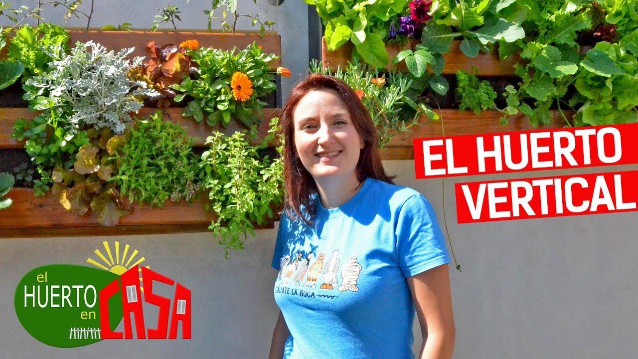 El huerto en casa 81 el gran huerto vertical youtube - El huerto en casa ...
