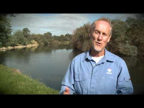 Lower Mitchell River Rehabilitation Project