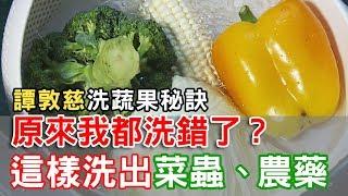 【挖健康】原來我都洗錯了!「譚敦慈洗蔬果秘訣」這樣洗出菜蟲農藥