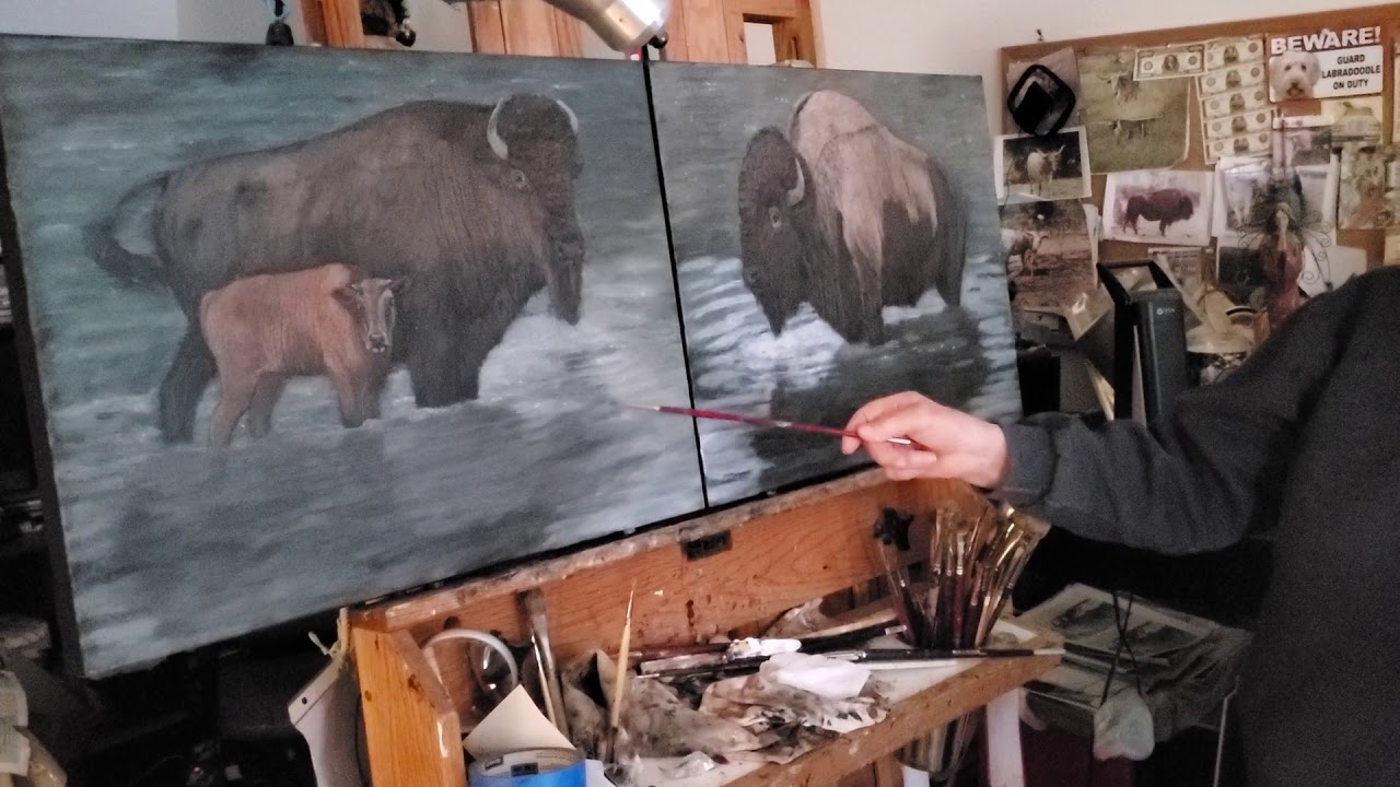 Video – February 8, 2021, Bison in Pond
