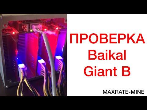 Baikal giant B. Проверка Майнера.