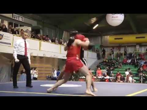Championnat de France de Wushu sportif taolu et sanda 2014, le reportage