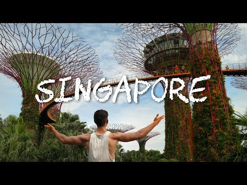How to Travel to Singapore / YOU NEED TO SEE THIS PLACE