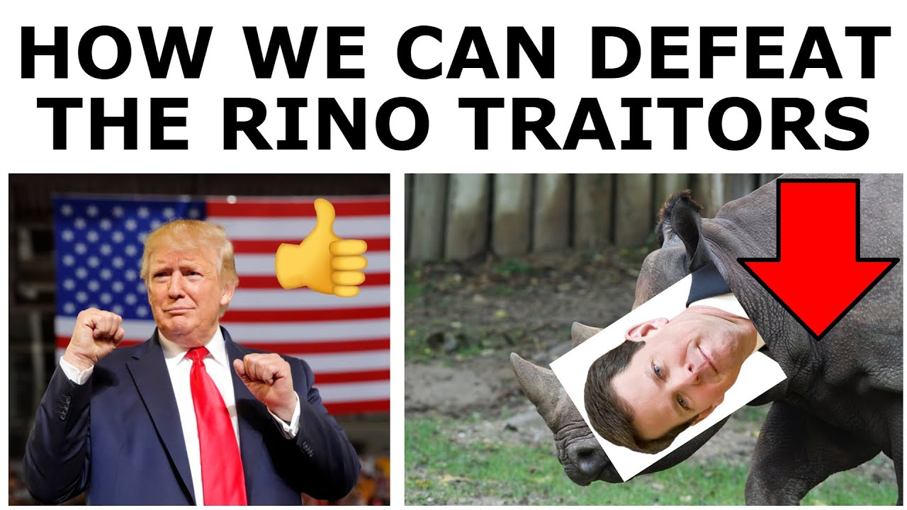How Trump Supporters Can DESTROY the RINO GOP Establishment