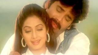 Jaanam Meri Jaanam - Sridevi, Nagarjuna | Udit Narayan, Alka Yagnik | Mr. Bechara | Romantic Song