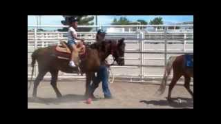 ponies & Petting zoo girl scouts.MPG
