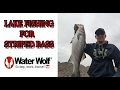 FISHING ON SCHOOLS OF STRIPED BASS {WaterWolf}