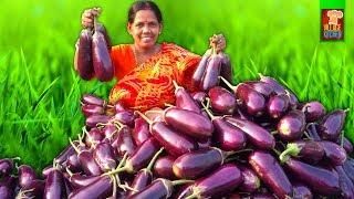 Begun Posto - Bengali Begun Recipe - Brinjal Curry with Poppy Seeds Paste - Village Kitchen
