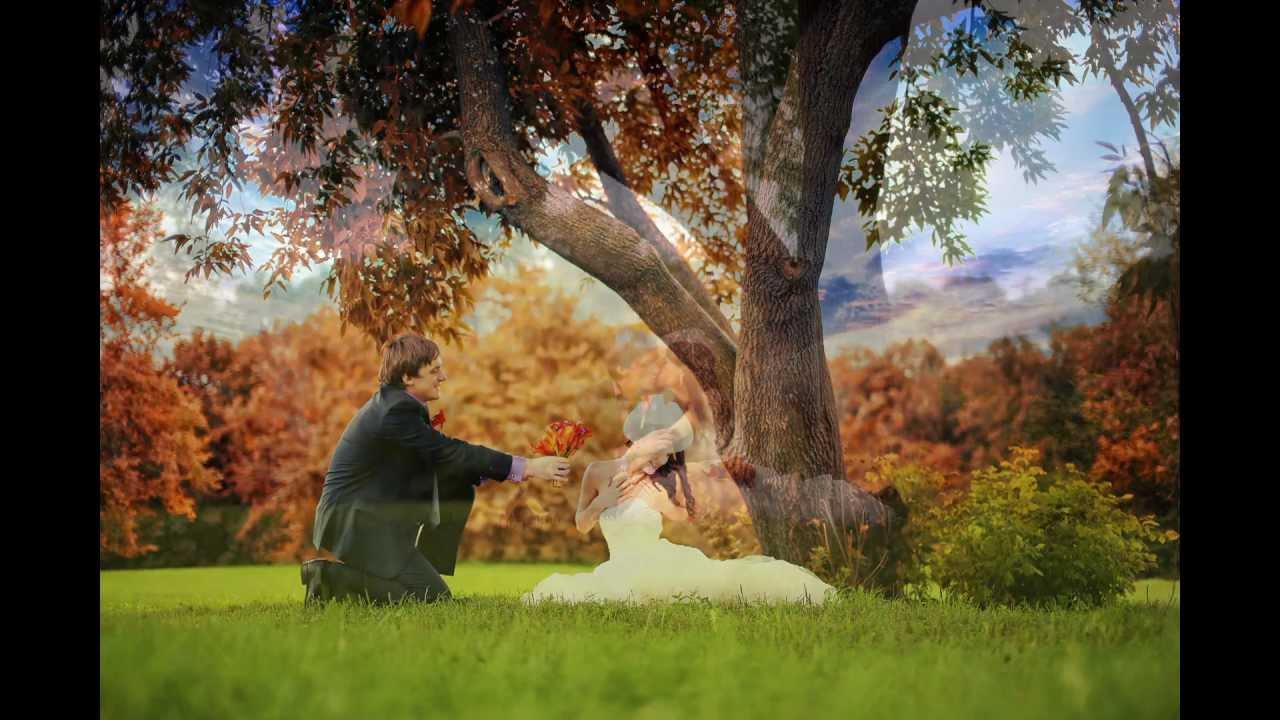 Картинки природы для свадебного фотошопа