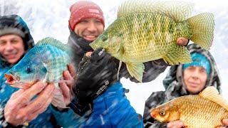 Рыбалка БЕЗ ОШИБОК Зимний фидер 2021 Такую РЫБАЛКУ ты еще не видел Feeder Fishing TV Клёвое место