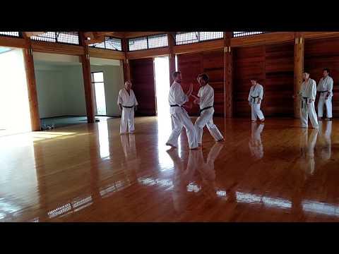Kumite Drill: Tomikomi Oizuki By Dusty DePree