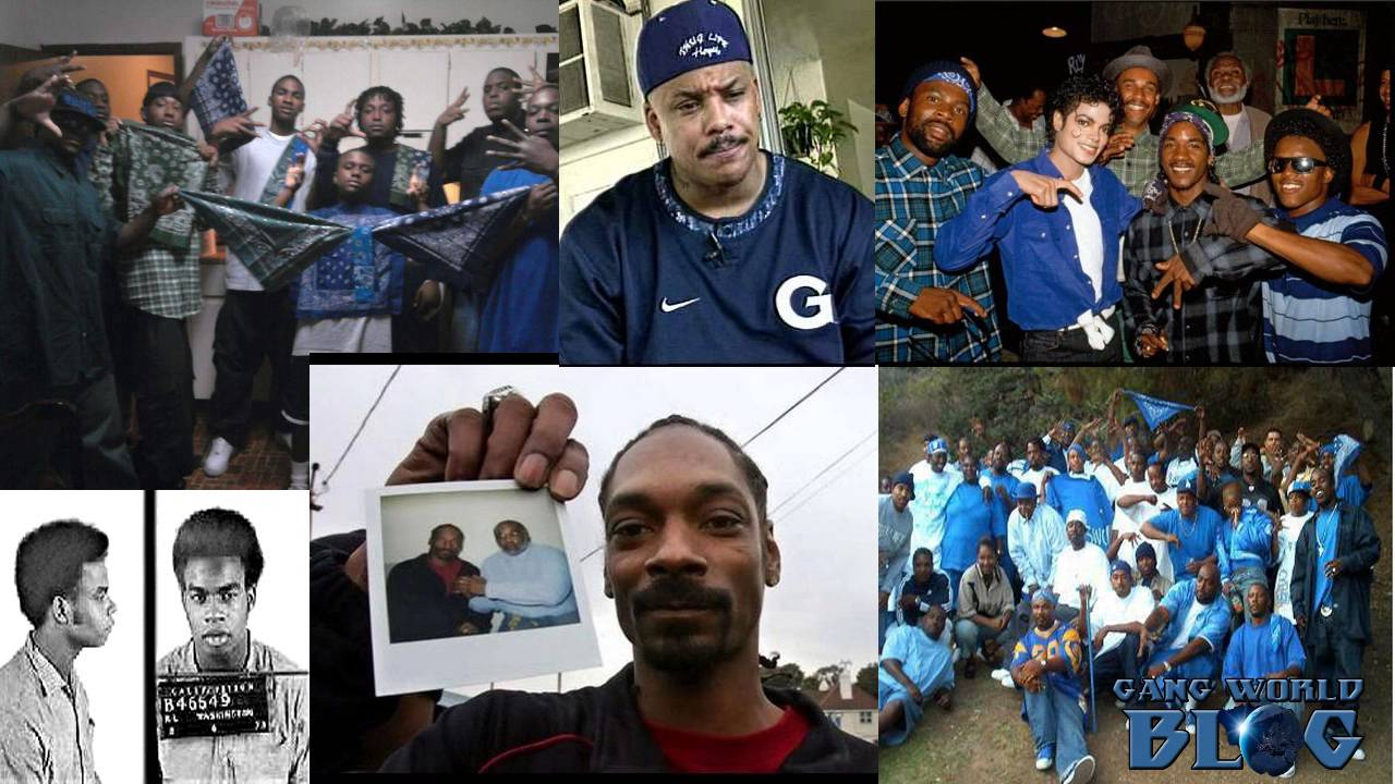 who are the crips essay Crips and bloods notes crips gang originated in los angeles in the mid- to late 1960 s and the bloods street gangs were formed in reaction to the crips.