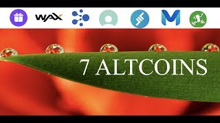 7 Altcoins With Room To Grow in Cryptocurrency Market