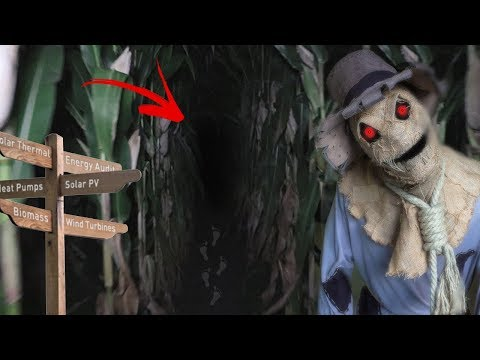 The Day I Explored A Haunted Corn Maze at 3 AM... *GONE WRONG*