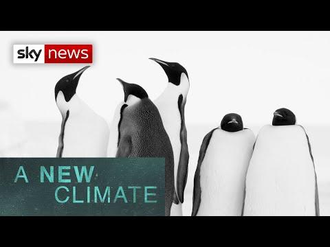 a-new-climate:-antarctica-under-threat