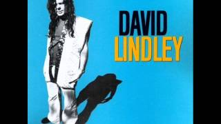 David Lindley - Bye Bye Love