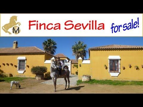 for sale: Finca con Cortijo y 70 hectares cerca Sevilla