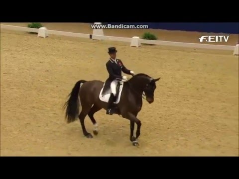 ~Fight Song~Dressage Video~