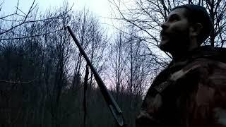 Весенняя охота на вальдшнепа 2019