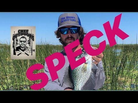 Speck Crappie [catch And Cook] Lake OKEECHOBEE