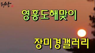 영흥도 해맞이 장미경갤러리관람