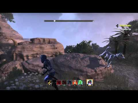 The Elder Scrolls Online: Hew's Bane Treasure Map II