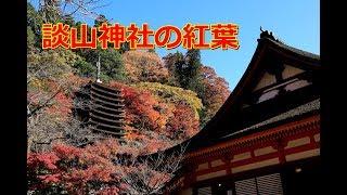 奈良・談山神社の紅葉/2018年11月 ~Tanzan jinjya in Nara~ thumbnail