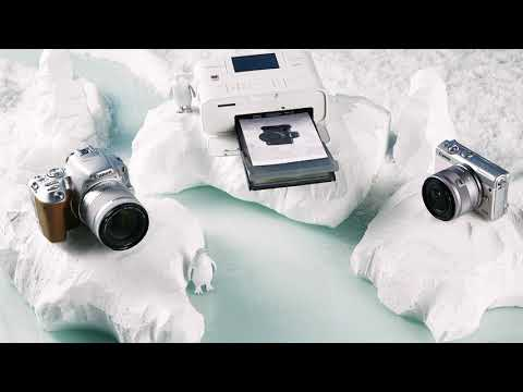 Marie Claire Arctic Christmas: Canon