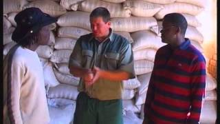 AGRICULTURE WITH AKWAFRICA 2004