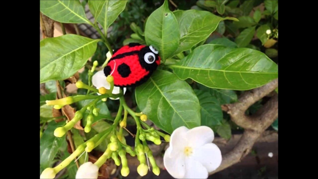 How to crochet little ladybird free amigurumi pattern youtube bankloansurffo Choice Image