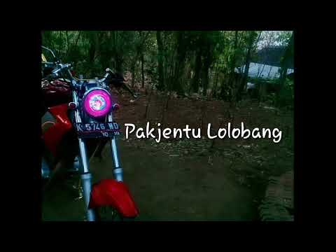Sluku* Batok Batok E USLUK USLUK😂 Story Wa Unik Cah Vijar Terbaru