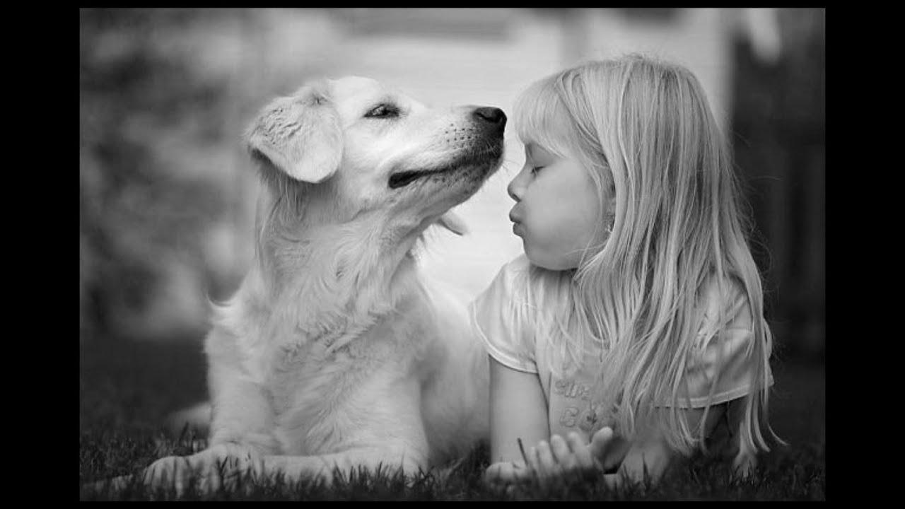 Дети, животные и юмор! УЛЫБНИТЕСЬ