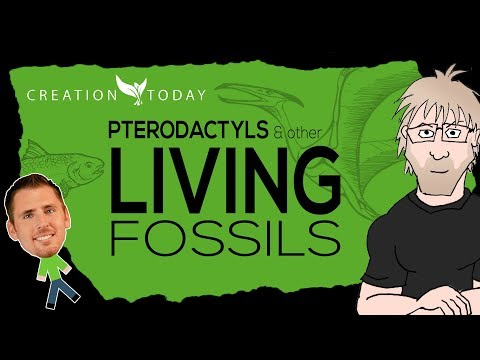 Pterodactyls and other Living Fossils - Creation Today Claims