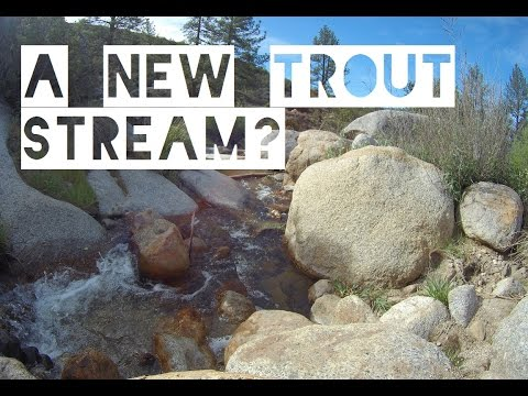 Fishing A New Creek For Wild Trout In Southern California
