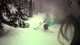 whistler backcountry tree skiing