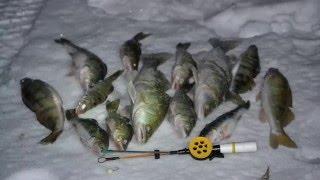 видео Зимняя ловля берша