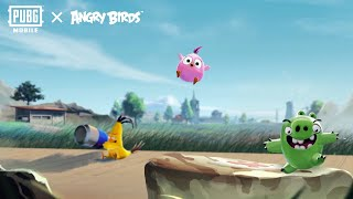 Angry Birds x PUBG MOBILE