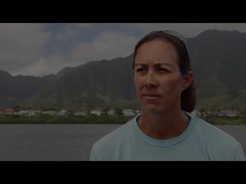 Honolulu Star-Advertiser: Bringing You What Matters