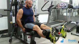 Разгибание ног сидя в тренажере: изолирующие упражнения для квадрицепсов