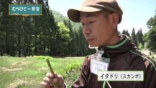 木島平村の地域おこし協力隊員が村人から田舎暮らしの技を学ぶシリーズ ...