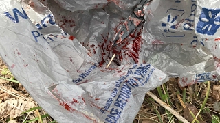 Vlog / Exploring Woods: BLOODY KNIFE FOUND! POSSIBLE MURDER WEAPON?!