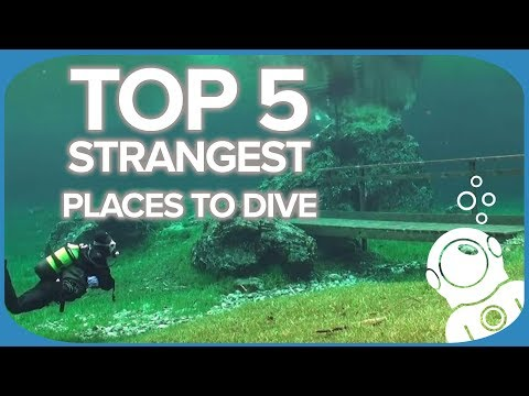 Top 5 Strangest Places to Dive
