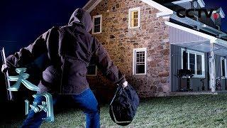 《天网》 案发除夕夜:大盗提前一个月布局伪装 终究逃不过警察法眼 | CCTV社会与法