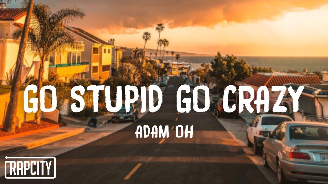 Adam Oh - GO STUPID GO CRAZY (Lyrics)
