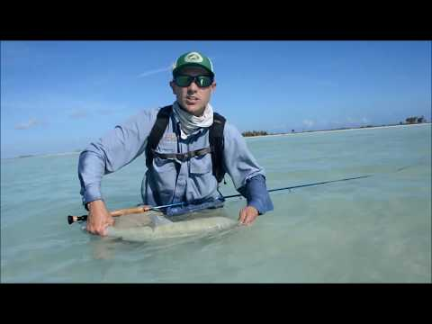 Simple Tips for Success on Christmas Island Bonefish