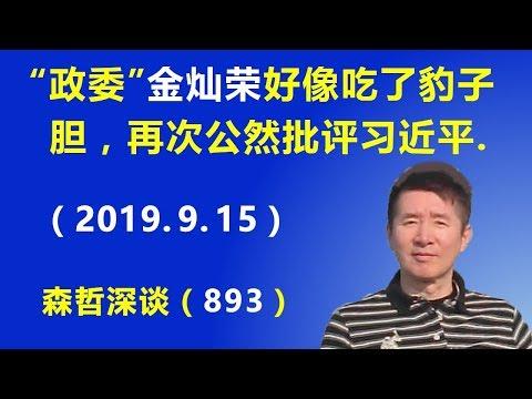 """""""政委""""金灿荣好像吃了豹子胆,再次公然批评习近平,这是怎么回事?(2019.9.15)"""