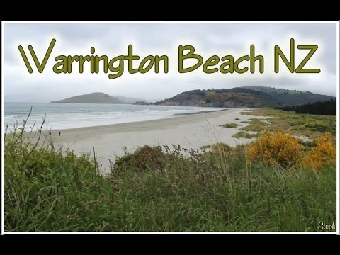 NZ Beaches Warrington Blueskin Bay South Island New Zealand Kiwi Travel Tourism