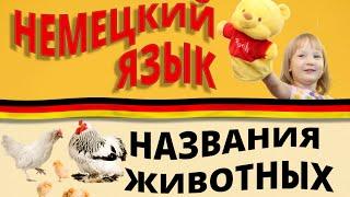 Немецкий с нуля для детей: животные/Tiere. #НемецкийЯзык. #ОксанаВасильева